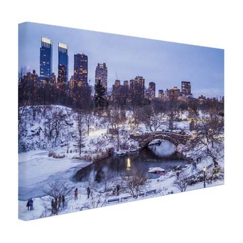 Foto Central Park NY in de winter op canvas afgedrukt