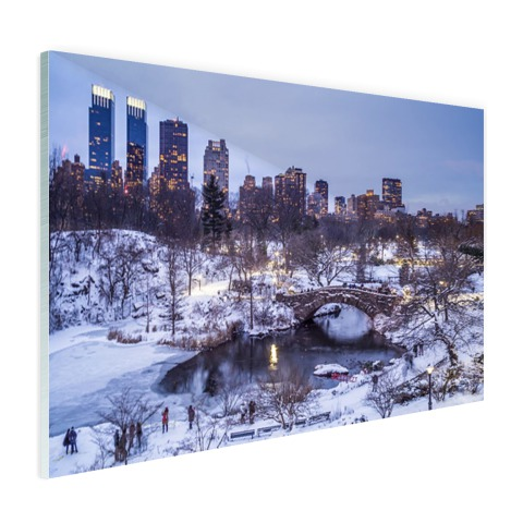 Foto Central Park NY in de winter op glas afgedrukt