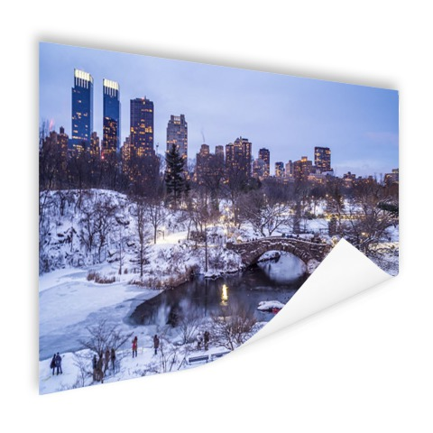 Foto Central Park NY in de winter op poster afgedrukt