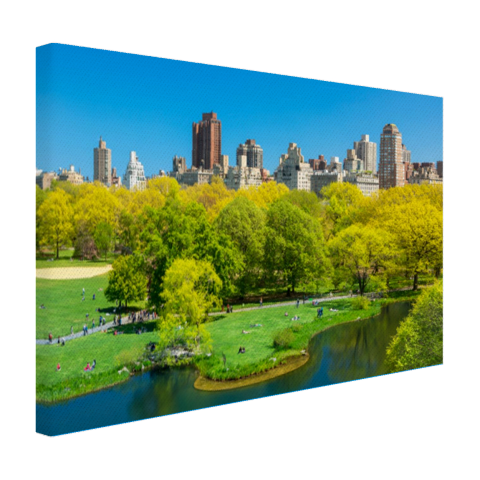 Groen Central Park in NY Canvas