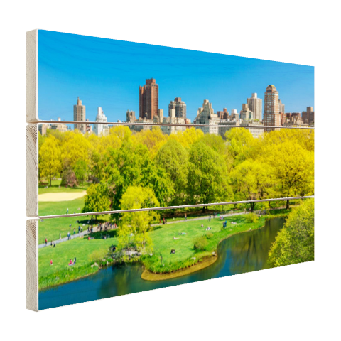 Groen Central Park in NY Hout