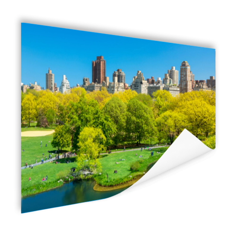 Groen Central Park in NY Poster