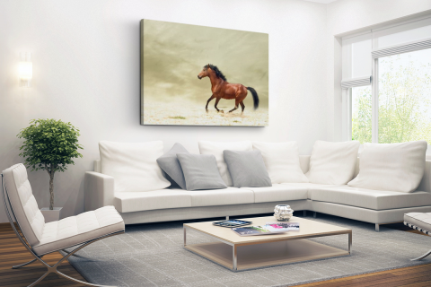 Galopperend paard Canvas