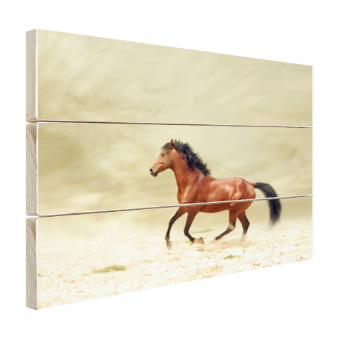 Galopperend paard Hout