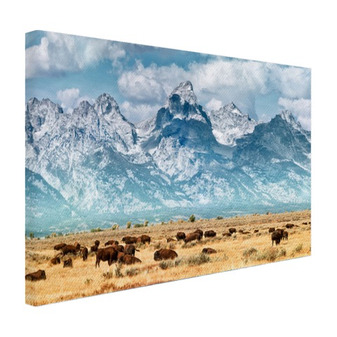 Grand Teton Mountains Amerika Canvas