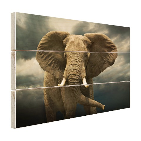Afrikaanse olifant donkere wolken Hout