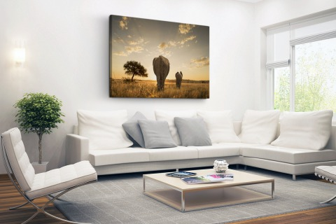 Olifant en kalf savanne Canvas