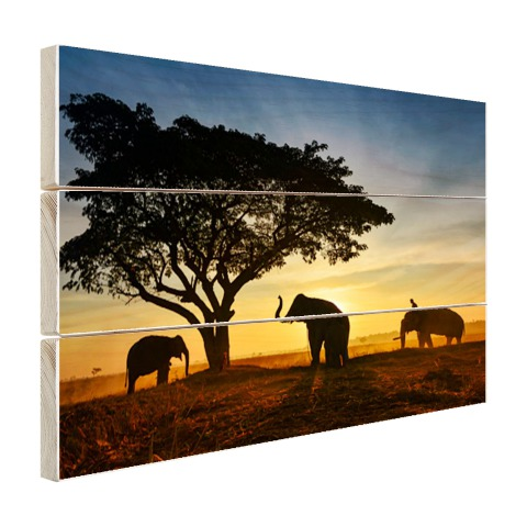Silhouet Thaise olifant zonsopgang Hout