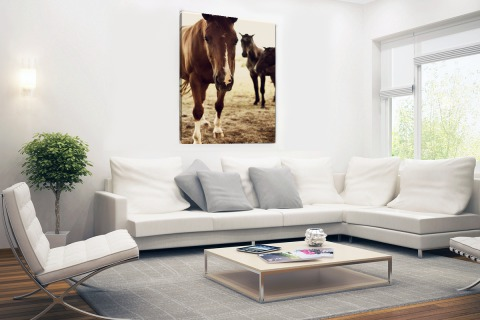 Paarden sepia fotoprint Canvas
