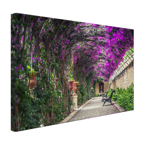Tunnelvormige pergola Canvas
