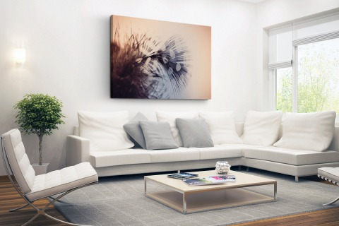 Veer fotoprint Canvas