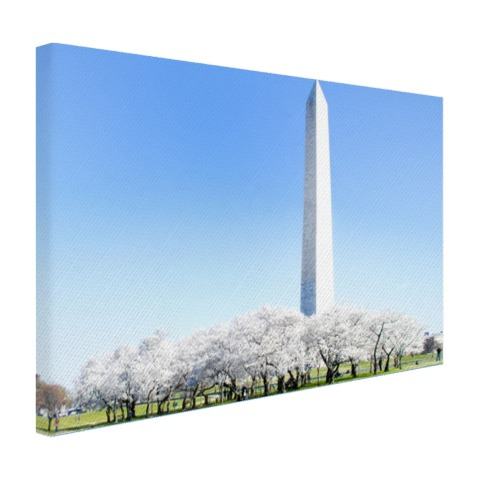 Kersenbloesems Washington monument canvas