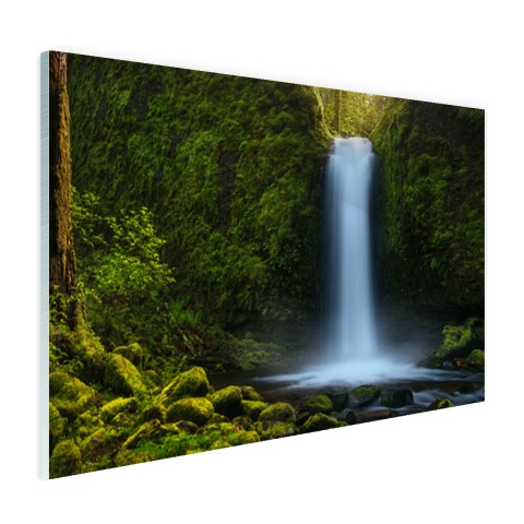 Jungle waterval Glas