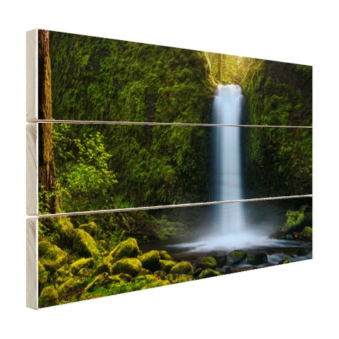 Jungle waterval Hout