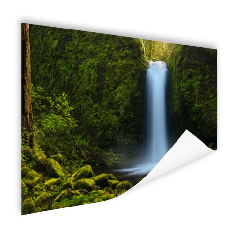 Jungle waterval Poster