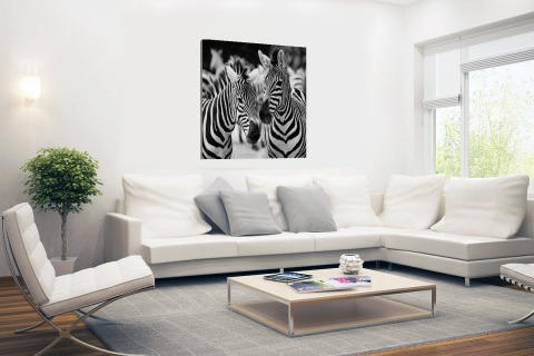Zebra zwart wit Canvas